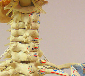 profiles teaser Physiotherapie_02.jpg