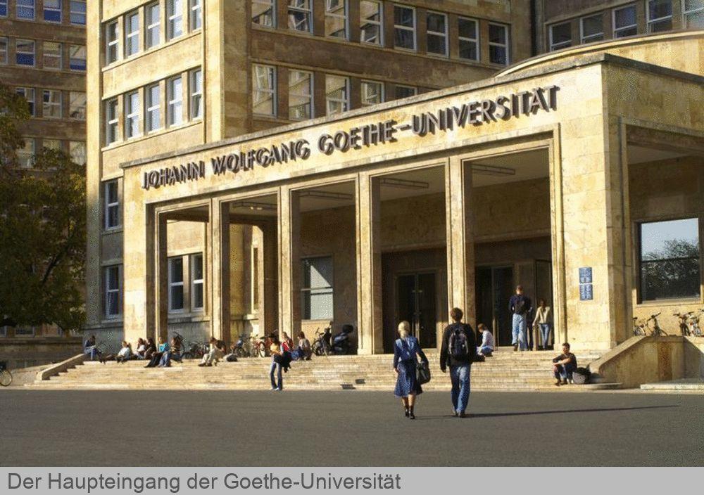 Bewerbung Uni Frankfurt